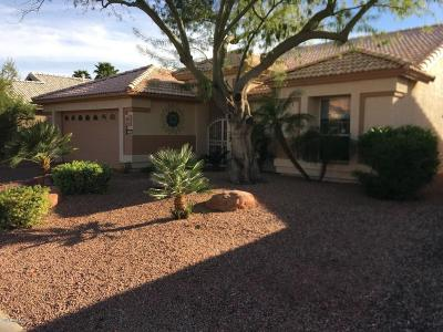 Goodyear Single Family Home For Sale: 15641 W Monterey Way