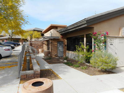 Scottsdale Commercial For Sale: 10643 N Frank Lloyd Wright Boulevard #l101