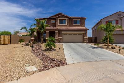 Buckeye Single Family Home For Sale: 24724 W Wedgewood Avenue
