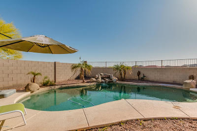 Goodyear Single Family Home For Sale: 13302 S 176th Lane
