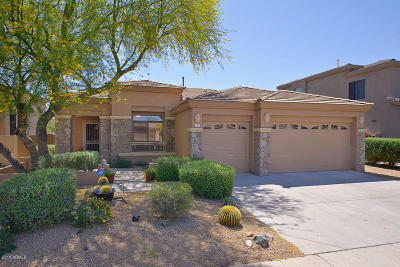 Phoenix Single Family Home For Sale: 5223 E Herrera Drive