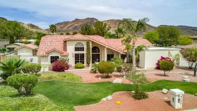 Phoenix Single Family Home For Sale: 4720 W Avenida Del Rey