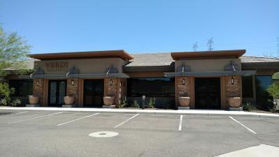 Scottsdale Commercial For Sale: 10697 N Frank Lloyd Wright Boulevard #107