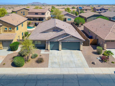 Single Family Home For Sale: 43942 W Adobe Circle