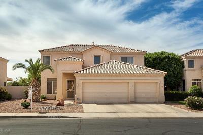Avondale Single Family Home For Sale: 11125 W Cottonwood Lane