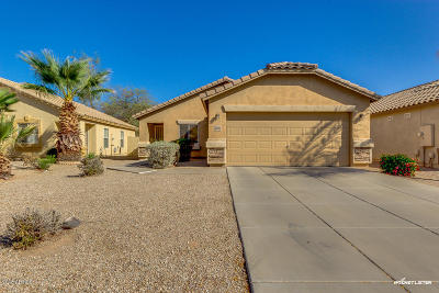 San Tan Valley, Queen Creek Single Family Home For Sale: 2850 E Bagdad Road