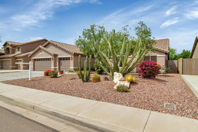 Peoria Single Family Home For Sale: 21638 N 86 Lane