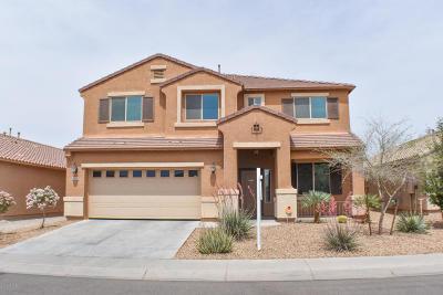 Maricopa Single Family Home For Sale: 40122 W Robbins Drive