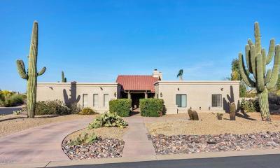 Scottsdale Single Family Home For Sale: 23202 N Las Lavatas Road