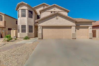 Single Family Home For Sale: 26122 N 67th Drive