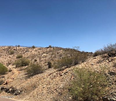 Phoenix Residential Lots & Land For Sale: 2456 E Glenhaven Drive