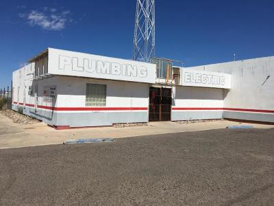 Douglas AZ Commercial For Sale: $250,000
