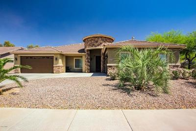 Queen Creek Single Family Home For Sale: 21831 S 218th Street