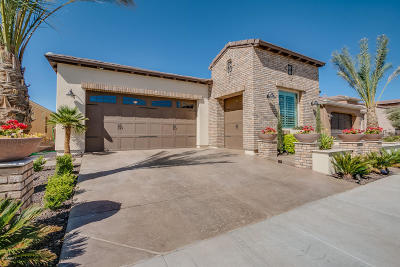 San Tan Valley Single Family Home For Sale: 100 E Camellia Way