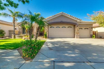 Tempe Single Family Home For Sale: 360 W Verde Lane