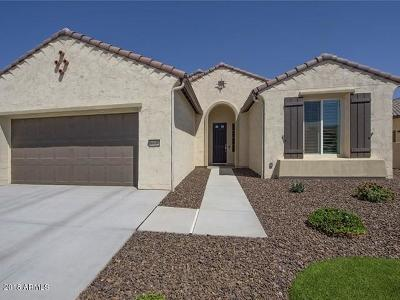 Goodyear Single Family Home For Sale: 16658 W Monte Vista Road