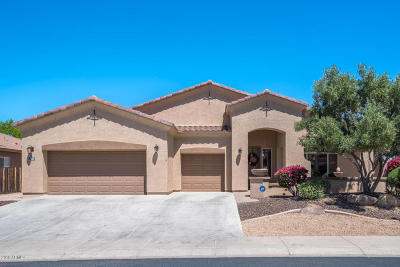Peoria Single Family Home For Sale: 9618 W Quail Track Drive