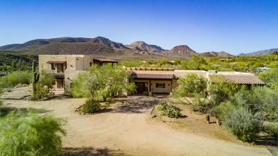 Cave Creek Single Family Home For Sale: 41667 N 51st Street