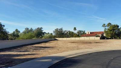 Scottsdale Residential Lots & Land For Sale: 10991 E Fanfol Lane