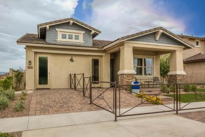 Mesa Single Family Home For Sale: 4513 S Volt Lane