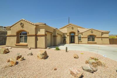 Mesa Single Family Home For Sale: 10040 E Grandview Street