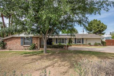 Phoenix Single Family Home For Sale: 1512 W Butler Drive