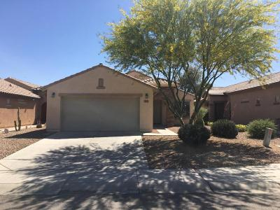 San Tan Valley Single Family Home For Sale: 33037 N Quarry Hills Drive