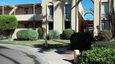 Scottsdale Apartment For Sale: 6930 E 3rd Street