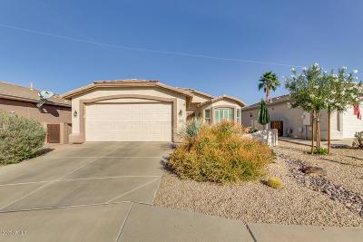 Chandler Single Family Home For Sale: 3364 E Bellerive Place