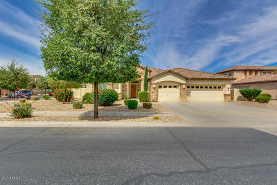 Litchfield Park Single Family Home For Sale: 42 N Vineyard Lane