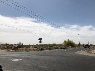 Buckeye Residential Lots & Land For Sale: N Rainbow Valley Road