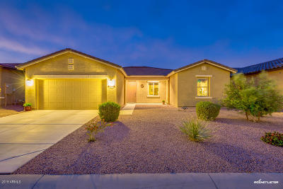 Maricopa Single Family Home For Sale: 42104 W Solitare Drive