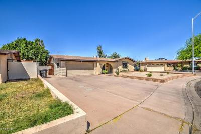 Mesa Single Family Home For Sale: 2234 W Edgewood Avenue
