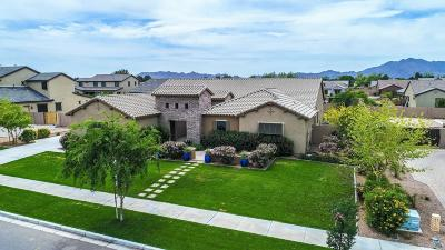 Queen Creek Single Family Home For Sale: 17727 E Appaloosa Drive