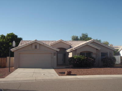 Glendale Single Family Home For Sale: 6950 W Via Montoya Drive