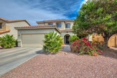 Queen Creek Single Family Home For Sale: 2830 W Sunshine Butte Drive