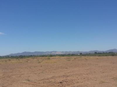 Douglas AZ Residential Lots & Land For Sale: $143,000