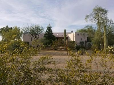 Tucson Single Family Home For Sale: 5810 W Potvin Lane