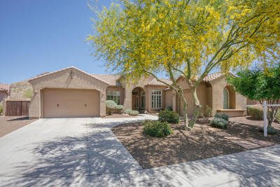 Phoenix Single Family Home For Sale: 26409 N 49th Lane