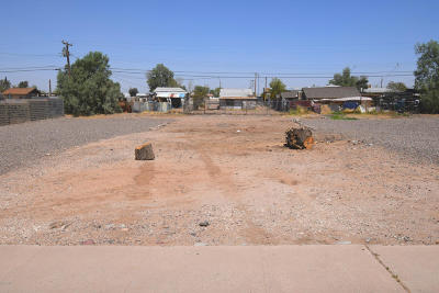 Phoenix Residential Lots & Land For Sale: 1316 E Cocopah Street