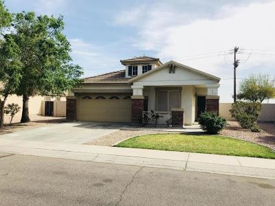 Apache Junction Single Family Home For Sale: 1753 E 39th Avenue