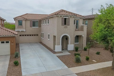 Gilbert Single Family Home For Sale: 3825 E Baars Avenue