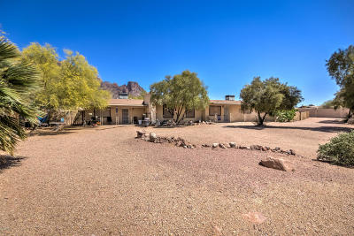 Apache Junction Single Family Home For Sale: 1815 N Geronimo Road