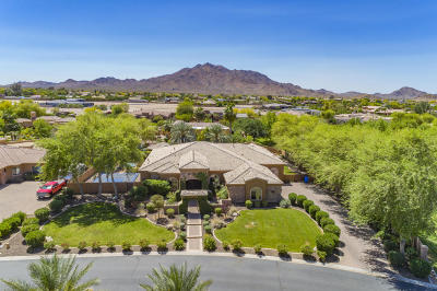 Gilbert Single Family Home For Sale: 3865 E Cherry Hill Drive
