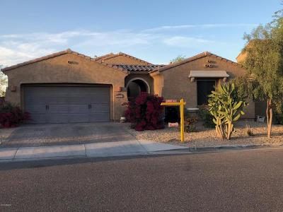 Goodyear Single Family Home For Sale: 14324 W Coronado Road