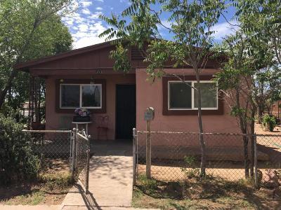 Douglas Single Family Home For Sale: 353 E 5th Street