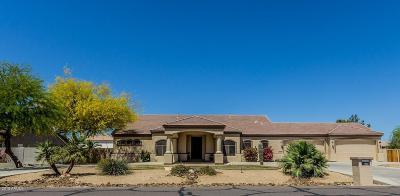 Litchfield Park Single Family Home For Sale: 12804 W Georgia Avenue
