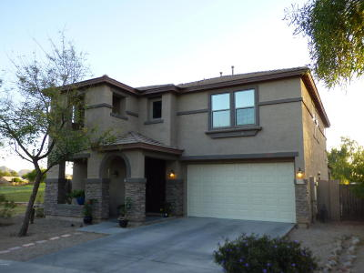 Queen Creek Single Family Home For Sale: 21802 E Via Del Palo