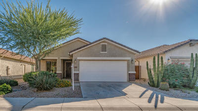 San Tan Valley Single Family Home For Sale: 183 W Twin Peaks Parkway