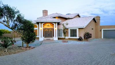 Litchfield Park Single Family Home For Sale: 20041 W Pasadena Avenue